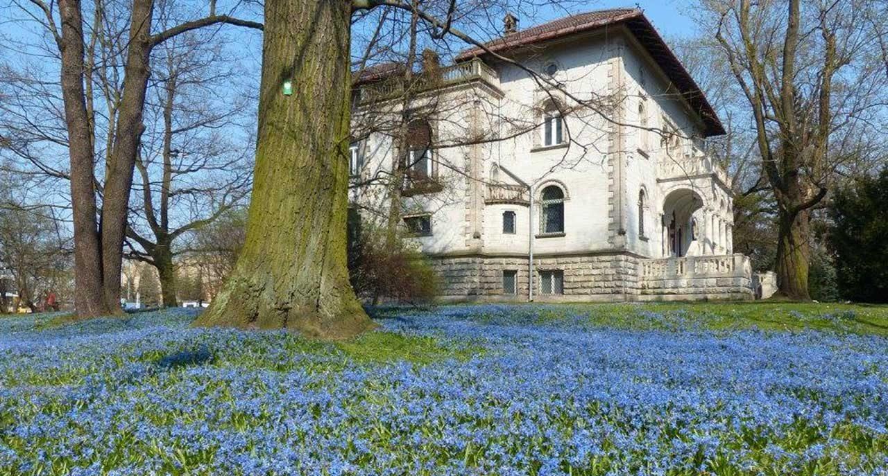 Wiosenny aspekt w Parku Klepacza (fot. P.Grzelak)